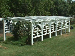 Grape Arbor-Custom